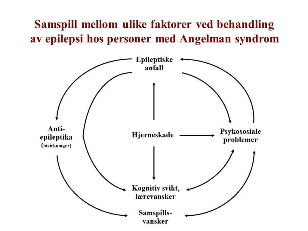 Epilepsi ved Angelmans syndrom