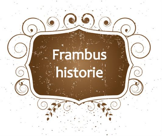 Frambus historie