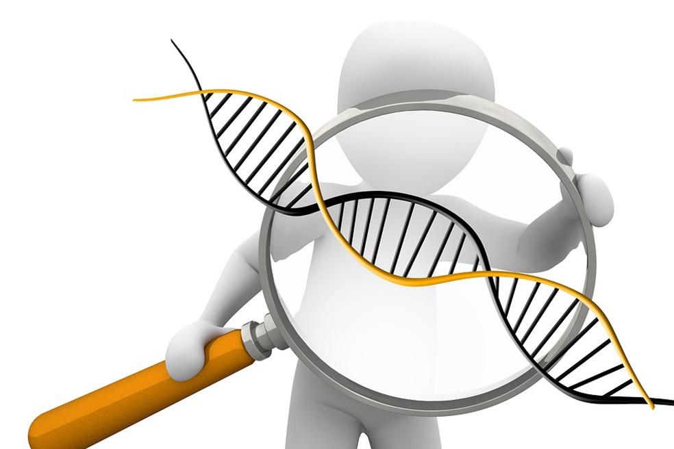 Tegning av en person som ser på en DNA-tråd gjennom et mikroskop