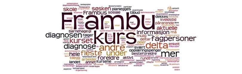 ordsky med ord som beskriver Frambus tjenester