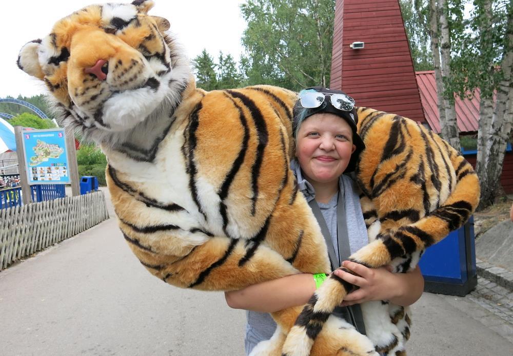Glad gutt har felt stor tiger